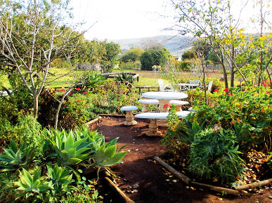 A lovely country cottage for tourists at the Rhebokskraal Olive Estate, McGregor