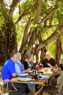Dining under the trees at Tanagra